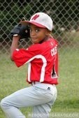 Baseball storage gear