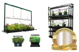 The Best Grow Shelves for Your Garage Garden