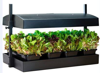SunBlaster Grow Shelf