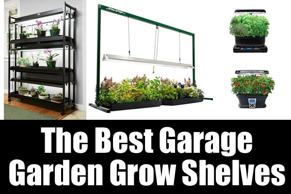 The best garage garden grow shelves