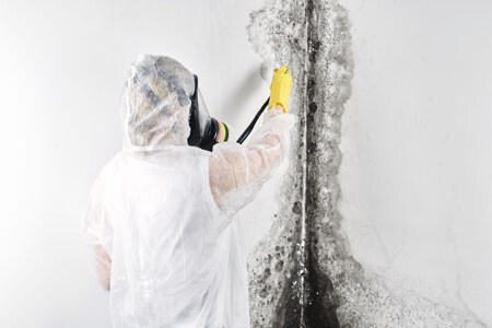 Person in full PPE killing mold on a wall