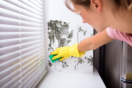 Woman incorrectly cleaning mold on a wall.